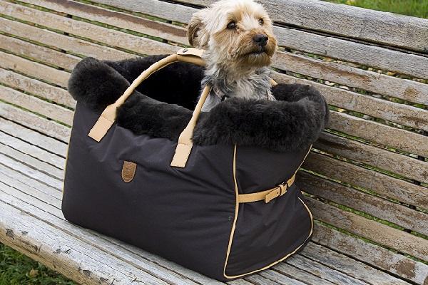 Hundetasche Bailey mit