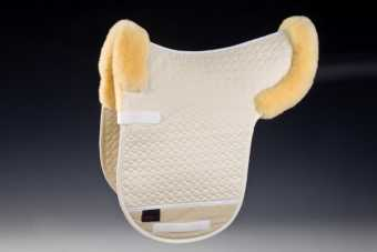 Saddlepad Champ D border |